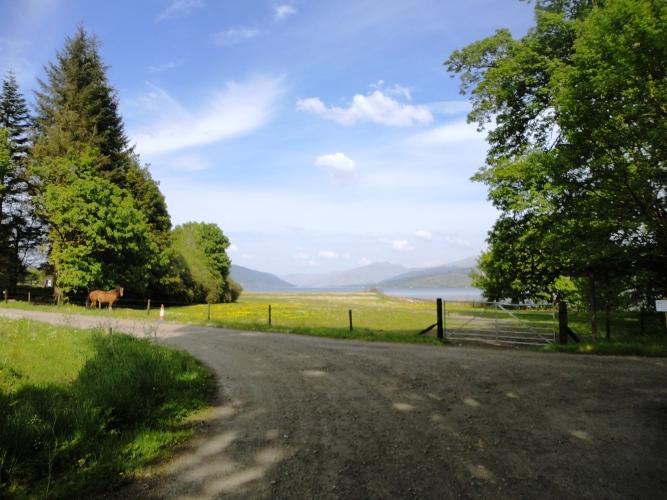 Loch Fyne horse riding
