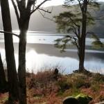 Kayaking on Loch Eck